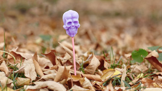 Don't Stake Candy into the Ground on Halloween, FFS